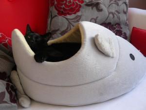panier à chat en forme de souris