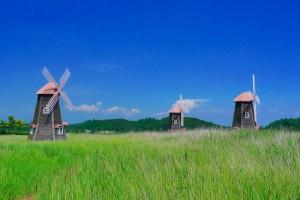 moulins à vent - Sorae Ecology Park - Incheon Corée du Sud