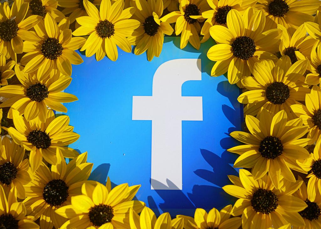 couronne de fleurs logo facebook
