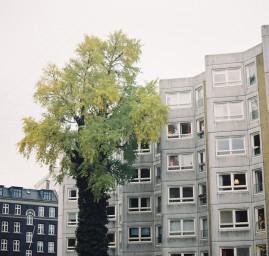 décision acheter un appartement sur plan