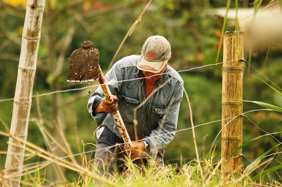 Devenir paysans : d'où nous est venue une telle idée ?